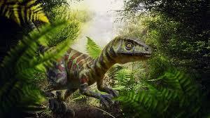 predator raptor